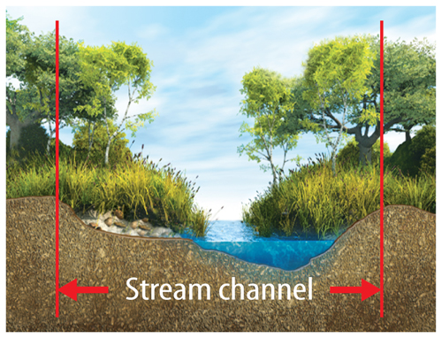 Illustration of a stream channel