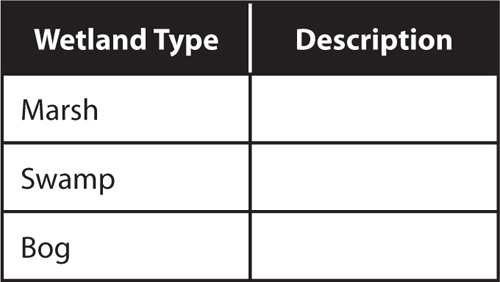 Example of a two-column table for describing wetlands