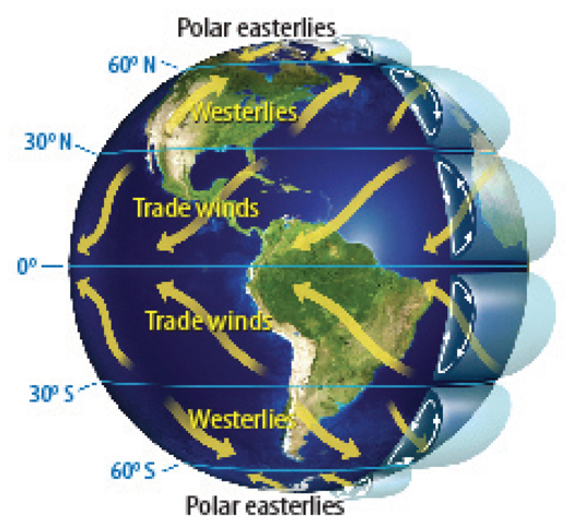 Global Winds Diagram Worksheet likewise Coriolis Effect And Hurricanes ...