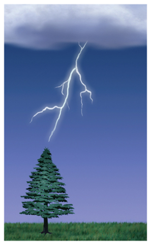 Illustration of lightning between a cloud and a tree