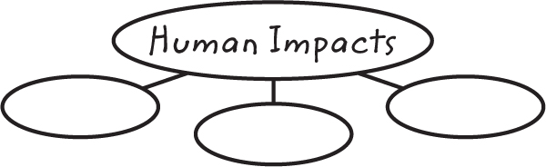 Illustration of a graphic organizer with one oval labeled Human Impacts and three small ovals underneath it