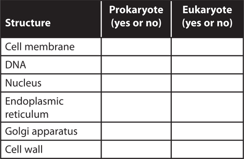 Example of a three-column table to compare the structures in eukaryotic cells and prokaryotic cells