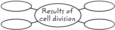 "Example of a graphic organizer with a center oval labeled ""results of cell division"" and four blank ovals branching out from it"