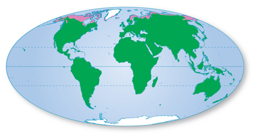 Map of the world; the northernmost parts of Canda and Europe are shown in pink