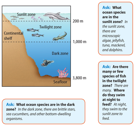 Ocean floor diagram worksheet ocean get free image about for Ocean floor zones diagram