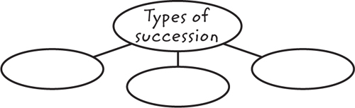 Illustration of a graphic organizer with the center oval labeled Types of Succession and three blank ovals below it
